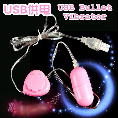 USB Bullet Vibrator (with Controller)